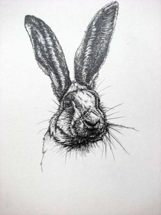 Hare by Cath Hodsman