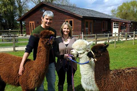 Adrian and Mym Holcombe with some of their friendly alpaca herd