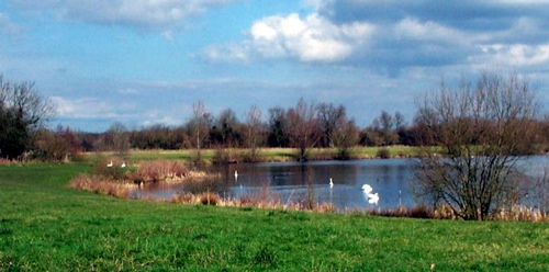 Lake 104, where Fairford residents once applied for the land to become a village green