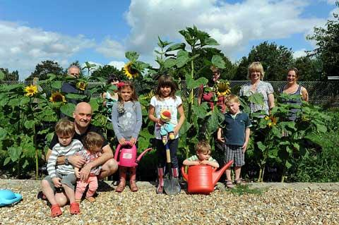 Youngsters by their sunflowers in the Latton Diamond Jubilee Community Garden