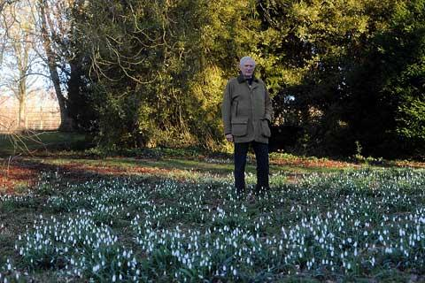 Sir Henry Elwes amongst the snowdrops at Colesbourne Park