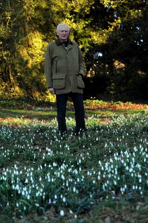 Last chance to see Colesbourne Park snowdrops this weekend