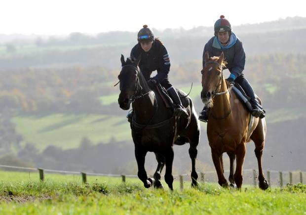 Double Ross, right, who was in winning form again at Cheltenham