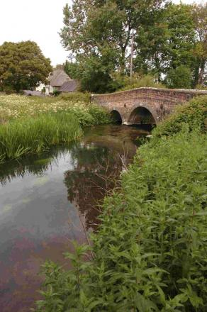 Rivers in Cirencester and the Cotswolds could be de-silted following deal between the county council and the Environment Agency