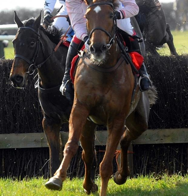 Wilts and Gloucestershire Standard: Local point-to-point