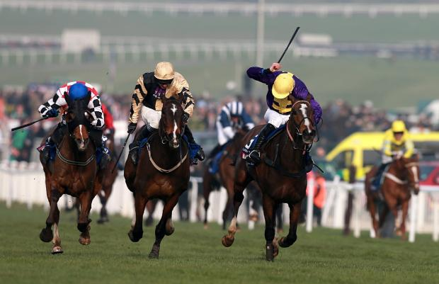 Gold Cup finale - Lord Windermere, yellow cap, pips On His Own, centre, and Gloucestershire's The Giant Bolster, left