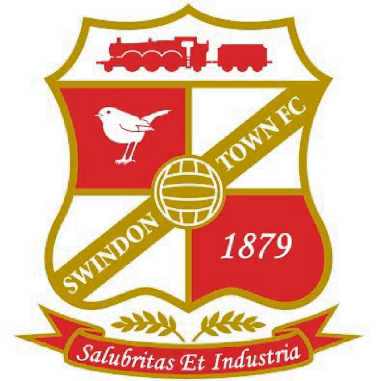 TOWN FLIER: Swindon Town fan Peter Mitchell delivers his post-match verdict