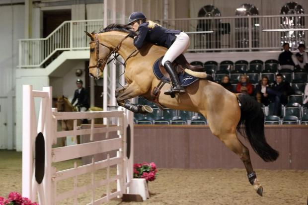 Jess Mendoza in showjumping action
