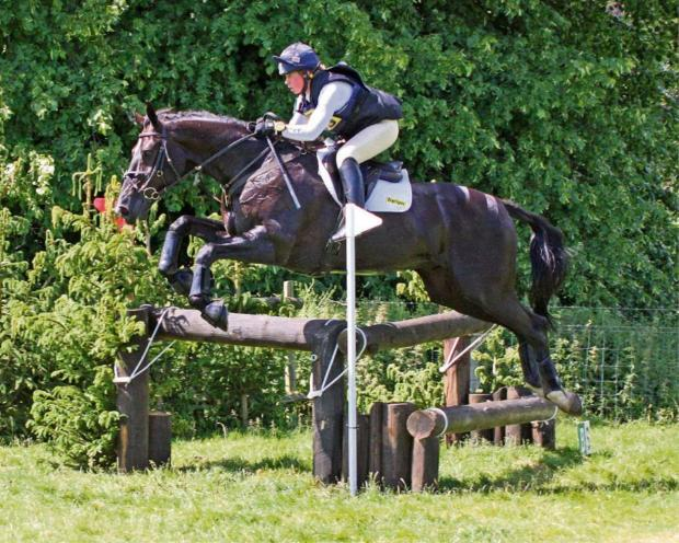 Local horse trials