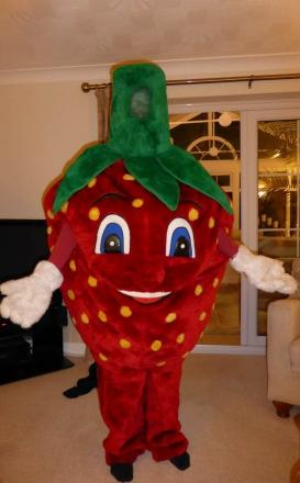 Strawberry Sam who has been handing out leaflets to promote the Strawberry Fayre. (7776994)