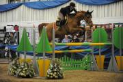 Angie Thompson jumping with Babette