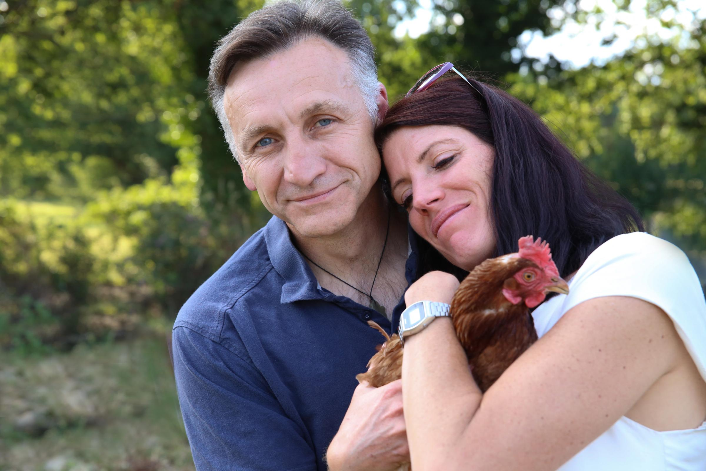 Hundreds of Wiltshire hens could be saved from the slaughter this weekend