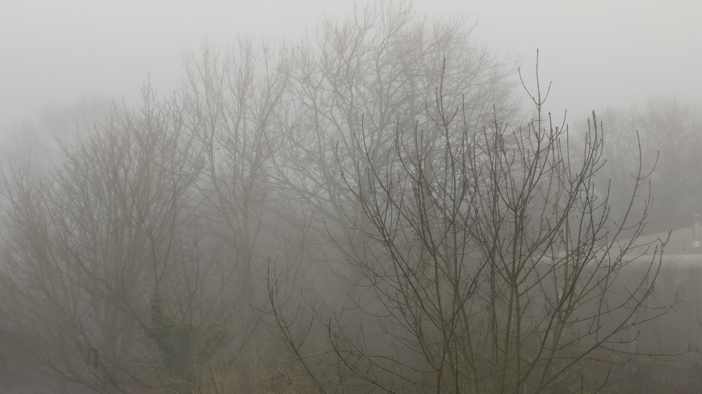 Weather warning remains in place as fog still lingers across Gloucestershire