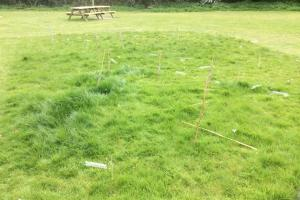 Vandals kicked over the saplings that had been donated and planted by volunteers at Siddington Playing Fields. The parish council says the young trees will be replaced
