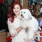 Wilts and Gloucestershire Standard: Ashleigh and Pudsey.