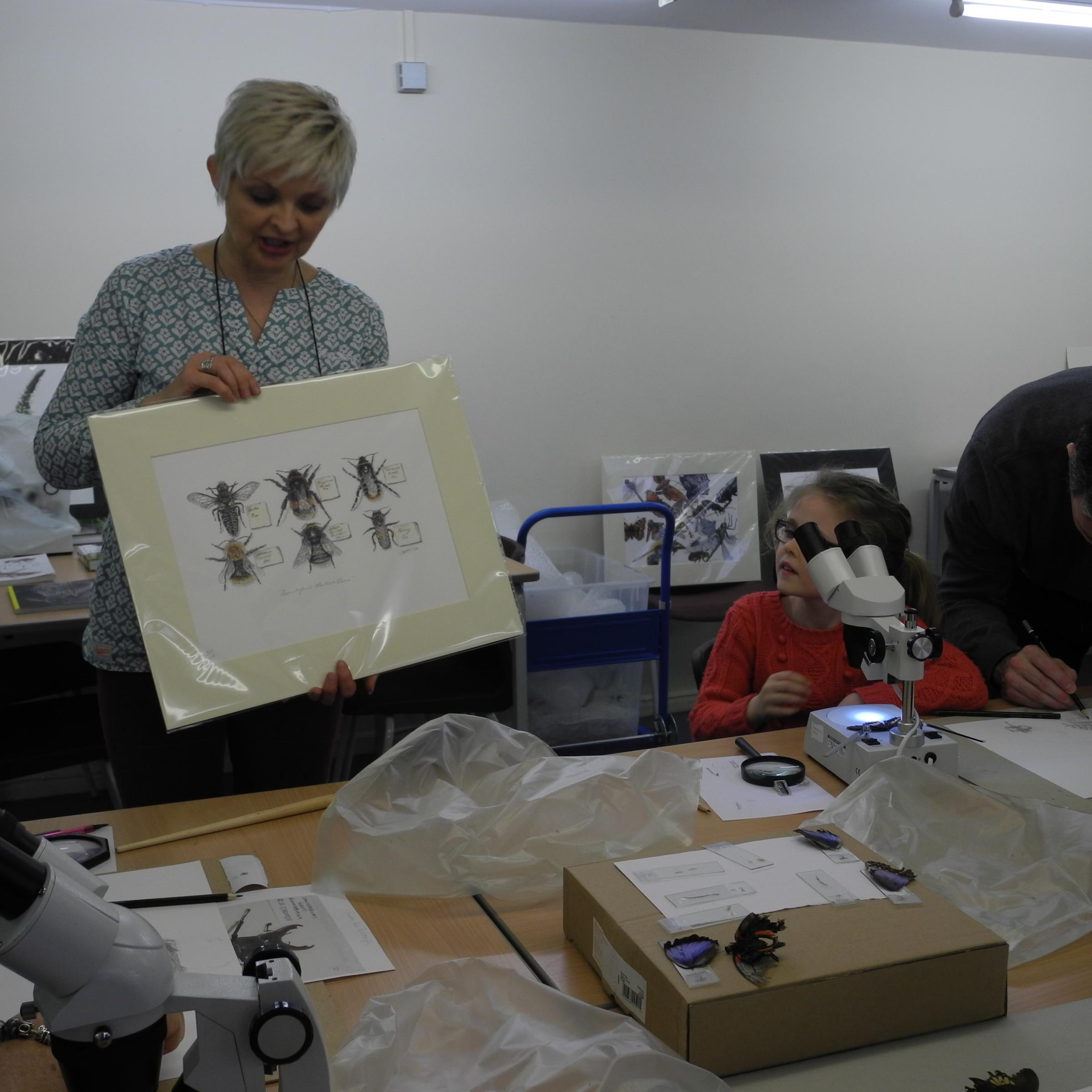 Incredible Insects  Children's Workshop with Cath Hodsman
