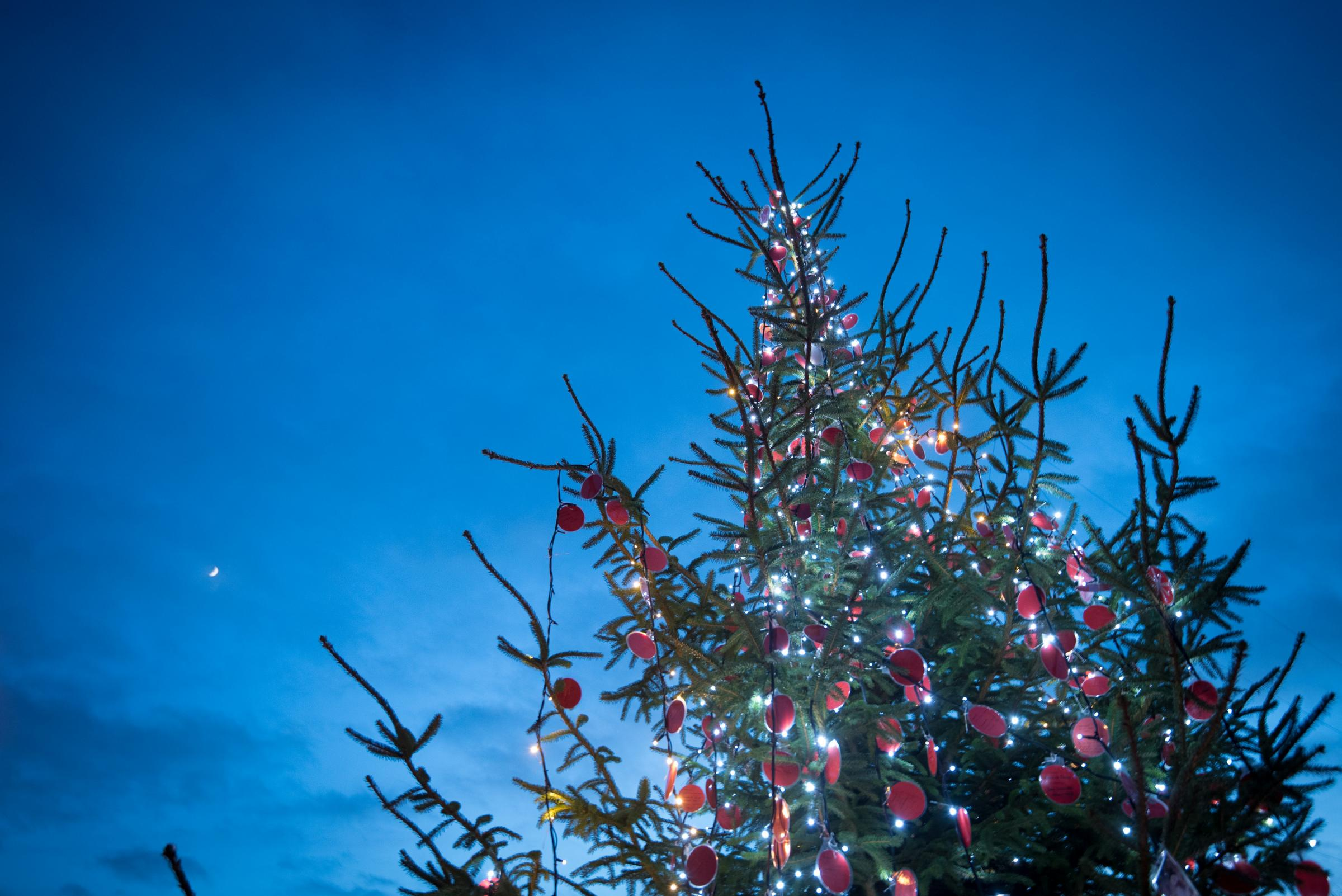 Christmas tree stolen from Lechlade town centre