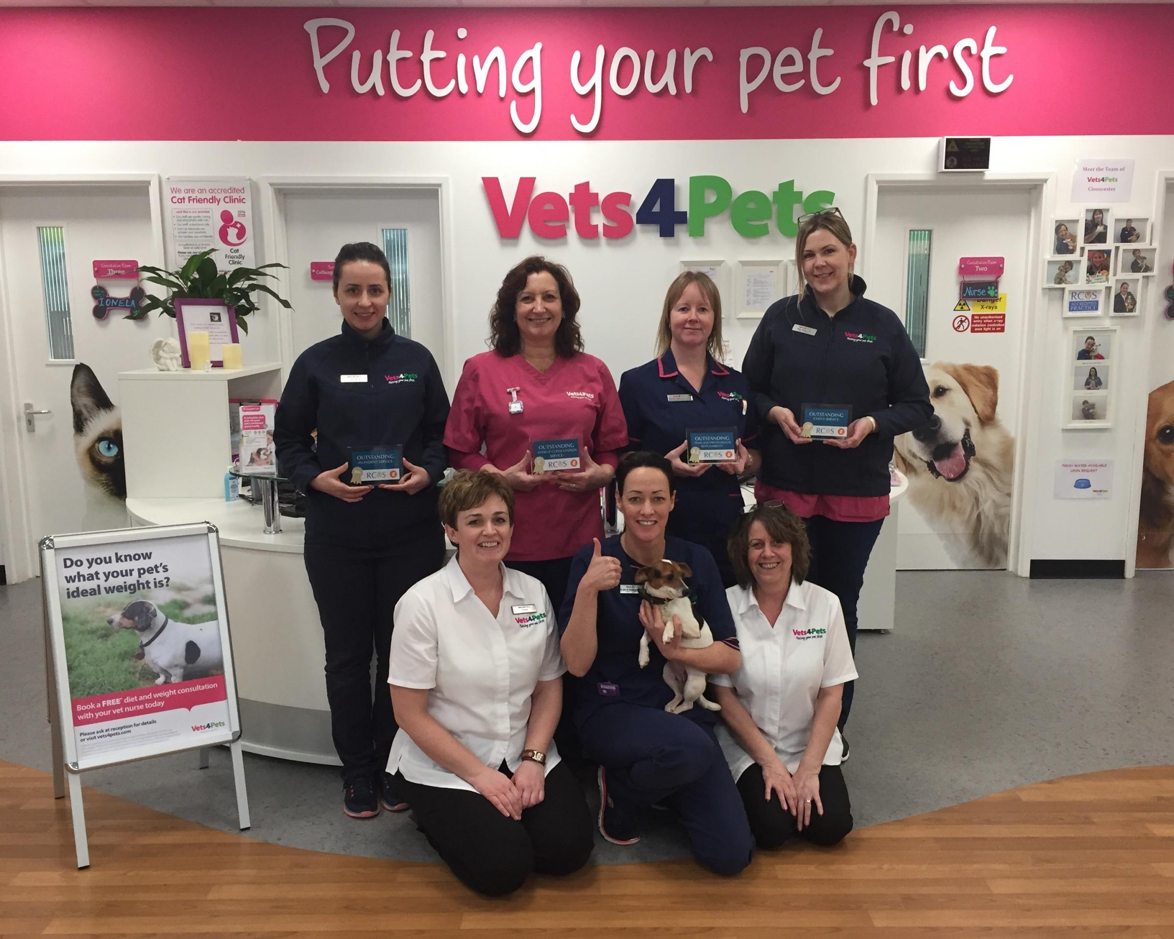 The team at Vets4Pets