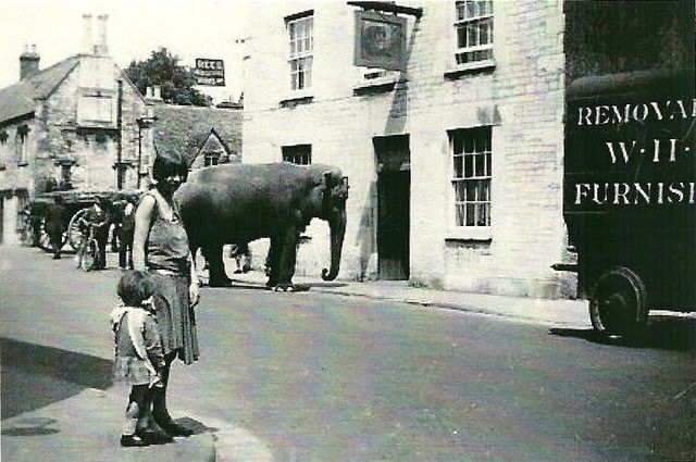 An elephant before the time when circuses were banned from using animals.