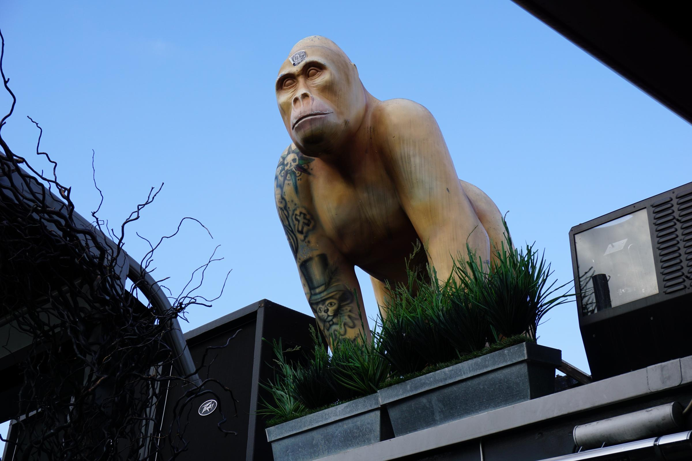 Giant gorilla statue stolen from London hotel
