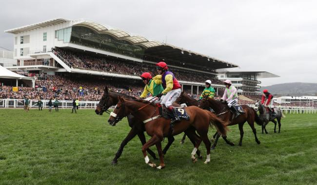 The Cheltenham Festival is taking place this week
